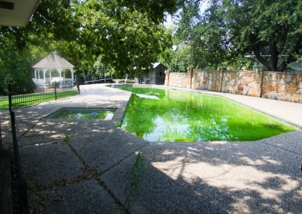 rattraper une piscine verte